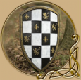 LARP Checkered shield